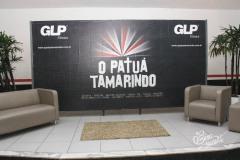 BIRA-PATUA-10010